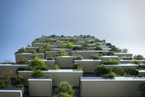 Going Green; Top Sustainable Building Trends in 2019