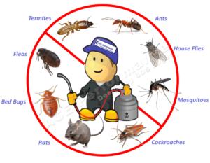 The appropriate way to deal with pest control